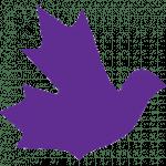 www.basicincomecanada.org